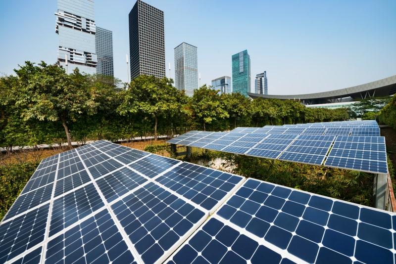 Sustentabilidade Empresarial – O Que é E Como Sua Empresa Pode Aplicá-la?